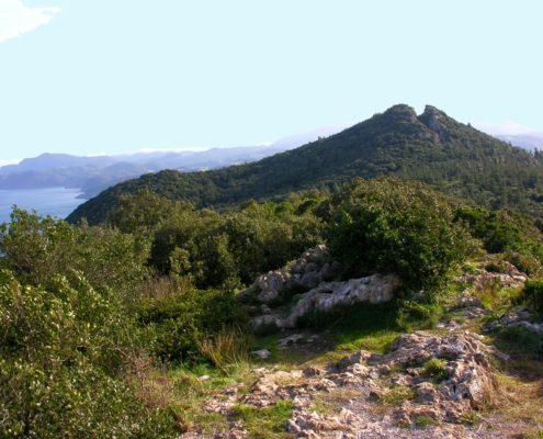 Cabo de Ogoño