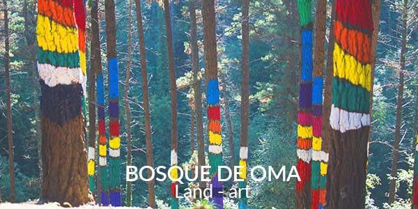 BOSQUE DE OMA - LAND ART