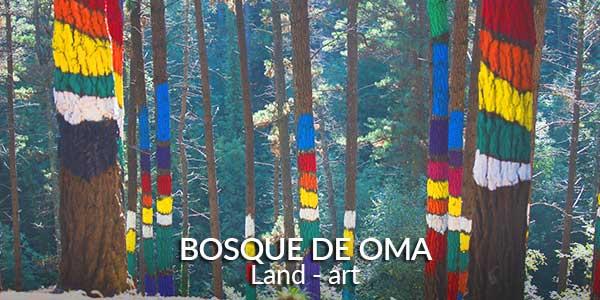 bosque de Oma Land-art